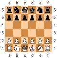 Los Alamos chess stillshot.png