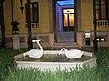 Los patos en su Casa - panoramio.jpg