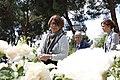 Los rosales franceses, ganadores en el concurso de rosas 'Villa de Madrid' 13.jpg