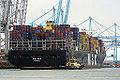 MSC Gaia (ship, 2010) 001.jpg