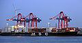 MSC Romanos (ship, 2003) 001.jpg