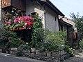 Maison fleurie à Yvoire 2.jpg
