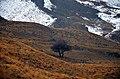 Mazandaran - Yoush road - panoramio (1).jpg