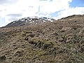 Meall Tionail - geograph.org.uk - 770768.jpg