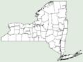 Melia azedarach NY-dist-map.png