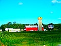 Meyer's Farm Market Pumpkin Silo Aug. 2008 - panoramio.jpg