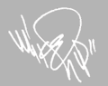 Mike Shinoda Signature.png