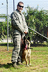Military working dogs our brothers in arms 120817-F-PG936-009.jpg