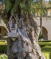 "Miniature ""mission"" attached to a tree outside Santa Inés Mission in Santa Ynez, California LCCN2013631421.tif"
