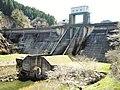 Mizunuma Dam.jpg
