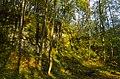 Mników, Poland - panoramio (2).jpg