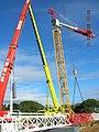 Mobile telescopic cranes.jpg