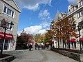 Mont-Tremblant - Québec – Canada - Chemin Curé-Deslauriers - panoramio.jpg