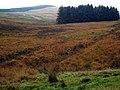 Moors near Fingland - geograph.org.uk - 267422.jpg