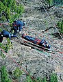 Moutain-rescue exercise between the Ranger training of the Japanese police.jpg