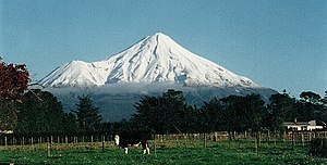 Taranaki - View of Mount Taranaki from Stratford, facing west.  Fanthams Peak is to the left of the main peak. The cow in the foreground is emblematic of Taranaki as a major dairying region.
