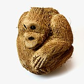 Coconut carved to look like a monkey