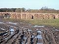 Mud swirls and hay bales, Martin Lane - geograph.org.uk - 1773595.jpg