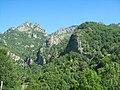 Muntele Cozia - panoramio.jpg