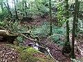 ND OS 00170 und G3716-03 Steinbruch Barkhausen 2.jpg