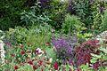 NGS Garden 3 UK.jpg