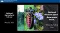 NISIC Wiki editing slides May2021.pdf