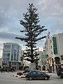 Nabeul centre ville, Tunisie (03).jpg