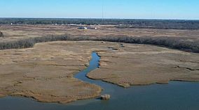 Nansemond national wildlife refuge.jpg