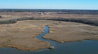 Nansemond River river in the United States of America