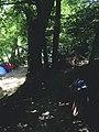 Nant-Cayla, 1203 Genève, Switzerland - panoramio.jpg