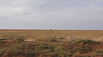 Forest cover by federal subject in Russia - Semi-desert in Narimanovsky District, Astrakhan Oblast