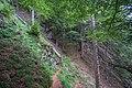 Naturschutzgebiet Feldberg (Black Forest) - Alpiner Steig am Feldberg - Bild 03.jpg