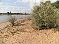 Naturstrand - panoramio.jpg