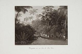 Navigation sur un bras du Rio Doce