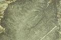 Nazca Lines, Kolibri, Peru (11341535053).jpg