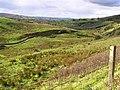 Near Glenshane - geograph.org.uk - 587924.jpg