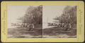 New Port House, Boat Landing, (...Bay), N.Y, from Robert N. Dennis collection of stereoscopic views.png