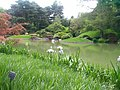 New York Botanical Garden 17.jpg