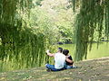 New York City - Central Park 02.jpg