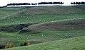 New Zealand - Landscape - 8675.jpg