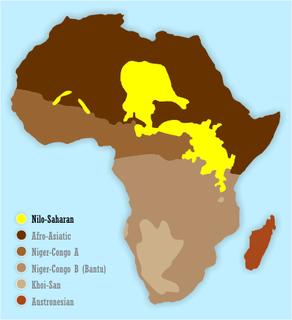 Nilo-Saharan languages language family
