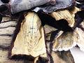 Nina staehli glory land sculptures 3.JPG