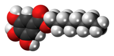 Space-filling model of the octyl gallate molecule