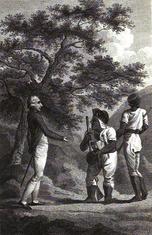 "Robert Charles Dallas - ""Old Cudjoe making peace"", engraving from The History of the Maroons (1803)"