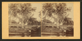 On Catawissa Island, Catawissa. (View along the banks of the river, man wading in water.), by Moran, John, 1831-1903.png