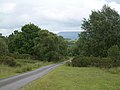 On Llangoed Common, looking towards Hay bluff - geograph.org.uk - 853896.jpg