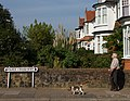 One Man and His Dog - geograph.org.uk - 973807.jpg