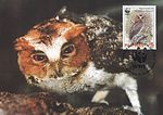 Otus megalotis nigrorum 2004 stamp+card of the Philippines.jpg