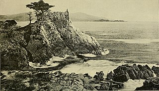 The Lone Cypress and 17-Mile Drive in Pebble Beach