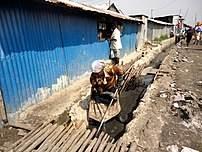 DrainageClearing drainage ditches in Nakuru, Kenya. Stagnant water provides a breeding ground for malaria-carrying mosquitoes.
